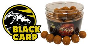 BLACK CARP - Naskladněno !!